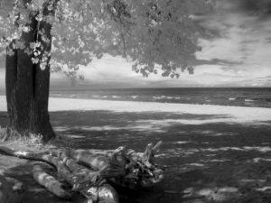 beach infrared