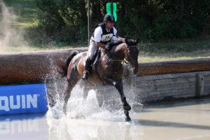 horse water hazard