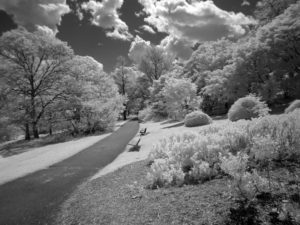 Highland Infrared